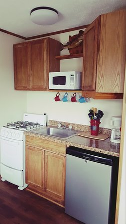 Bull Shoals, Арканзас: Kitchenette rooms is all you need
