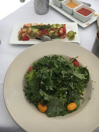 Baby Kale salad and Ceviche