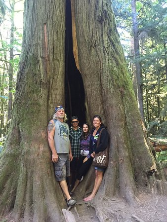 Πορτ Άλμπερνι, Καναδάς: Family photo posing inside one of the cedars at Cathedral Grove, Port Alberni Hwy, BC