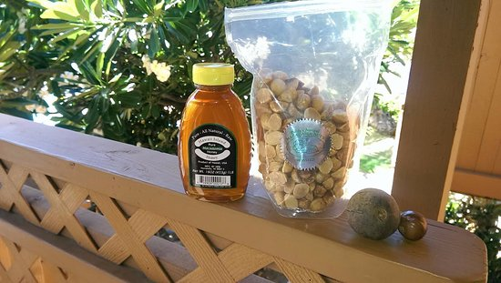 Hoolehua, Havai: We got Macadamia Honey, Roasted Macadamia Nuts and show the nut in the husk and one out of the h