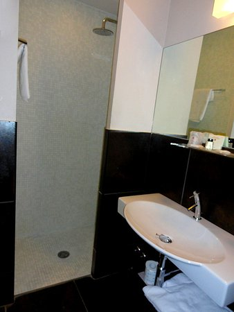 Hotel Caprice: The sink and the shower cabin