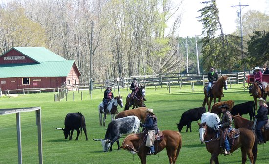 Rothbury, มิชิแกน: Horseback Riding