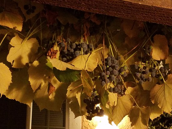 Glen Ellen Inn: Grapes growing on eaves outside of Cabin #1