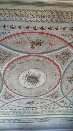 Palazzo Tucci: 20160828_083150_large.jpg