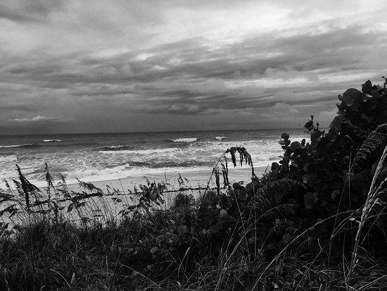 Hilton Melbourne Beach Oceanfront: photo2.jpg