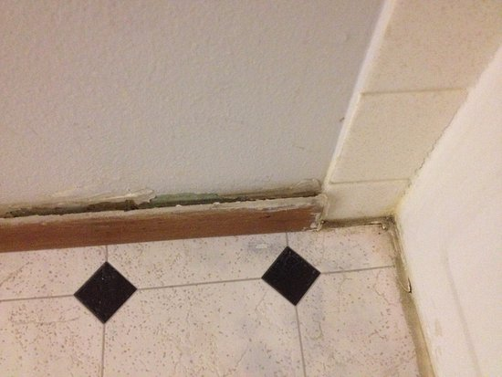 Super 8 Wells: baseboard loose from wall due to water damage