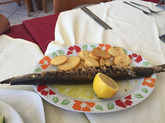Absolutely great food and service at Benikos 😀👍👍👍 Fresh Fish from sea