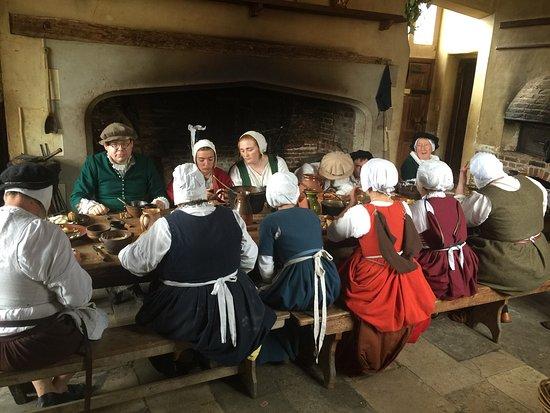 Tudor experience