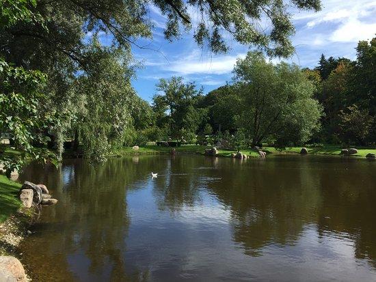 Парк в  Таллине