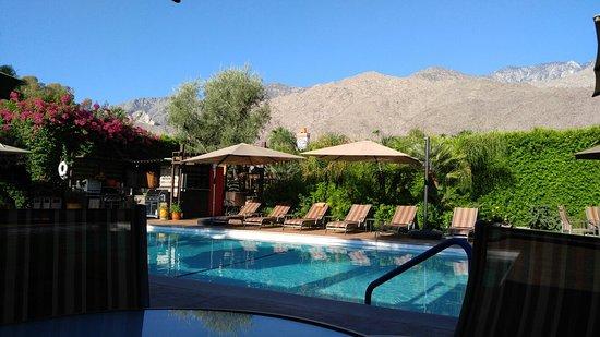Desert Riviera Hotel: 0830160823_large.jpg