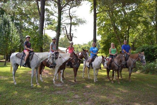 Wonderful Horses