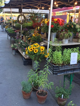 gorgeous flora at the farmer's market