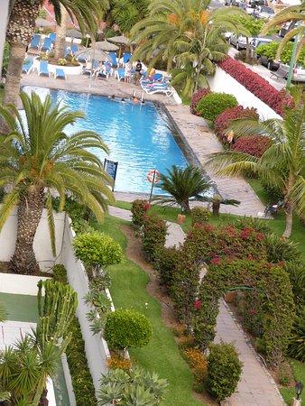 Interpalace by Blue Sea: es una parte de la piscina y jardín,la piscina espectacular en cuanto calidad de el agua,.