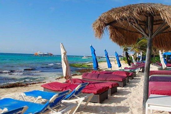 Pelicano Inn: Zona de reposeras del hotel