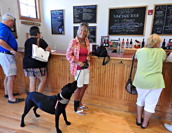 Seneca Lake Wine Trail: Fun days with our fur family too.