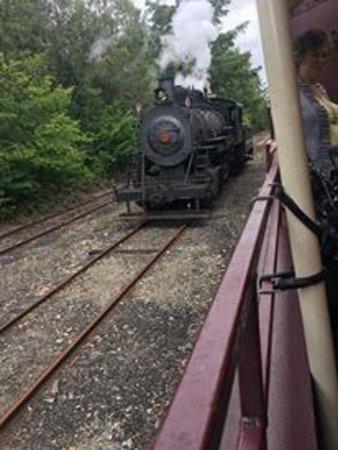 Chehalis, واشنطن: Chehalis Steam Train