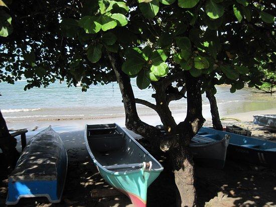 Puerto Viejo Beach: Pura vida!