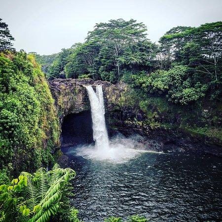 Wasabi Tours Hawaii