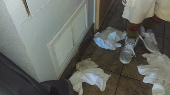 Marjac Suites: They had to put towels down to catch water from AC unit.