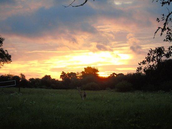 Columbus, Техас: Beautiful sunrises and sunsets . . .