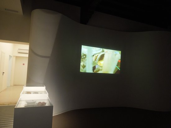 Museo del Vetro: A short film gives lots of info