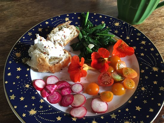Anchor Bay, Califórnia: radishes, sauteed radish greens, and tomatoes (all from the garden); we came with bread and chee
