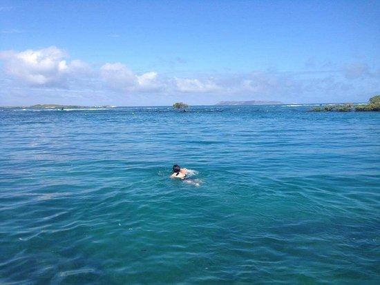 Puerto Villamil, Ecuador: Concha de perla, parece piscina