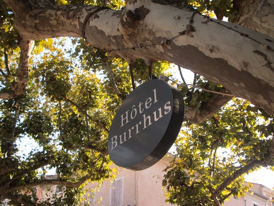 Hotel Burrhus: great hotel surrounded by fabulous sycamore trees