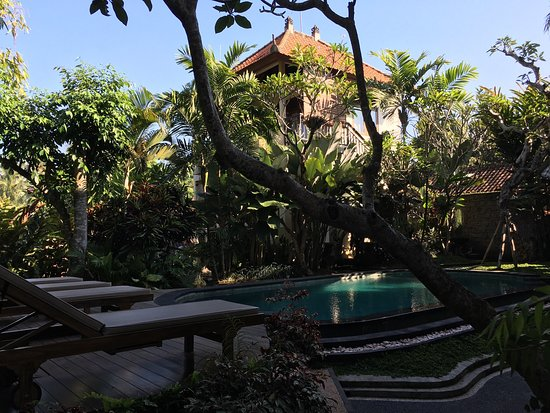 Padma Ubud Retreat: photo3.jpg
