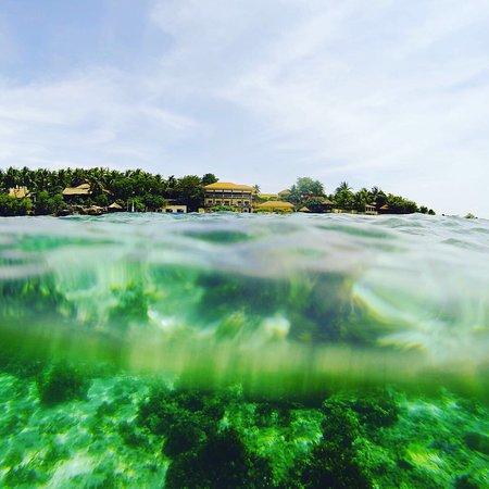 Turtle Bay Dive Resort: photo0.jpg