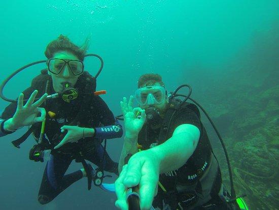 Turtle Bay Dive Resort: photo3.jpg