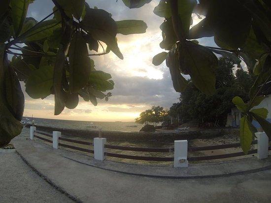 Turtle Bay Dive Resort: photo9.jpg