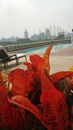 JW Marriott Hotel Shenzhen: Pool area