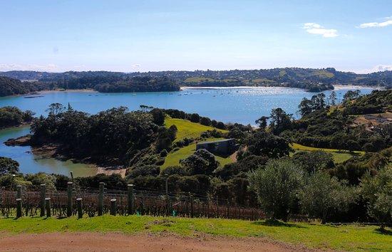 Waiheke-eiland, Nieuw-Zeeland: The view from Te Whau winery.