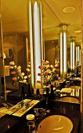 伯爾尼貝耶烏爾宮酒店張圖片