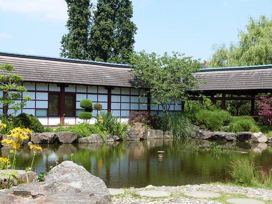 Le jardin japonais ile de versailles nantes picture for Jardin japonais nantes
