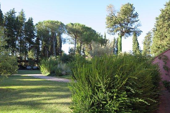 Braccagni, Italia: Jardines de Residenza Le Versegge