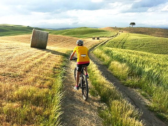 Anima Toscana Bike Tour