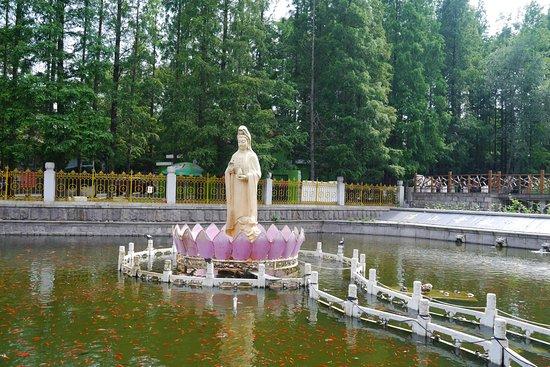 Zhanshan Temple: มีสระน้ำอยู่หน้าวัด และมีรูปปั่นเจ้าแม่กวนอิมกลางสระน้ำ ในสระมีปลาและเต่าเยอะมาก