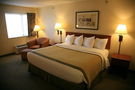New Victorian Inn & Suites Sioux City: Guest room