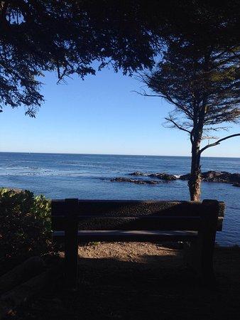 Wild Pacific Trail: photo2.jpg