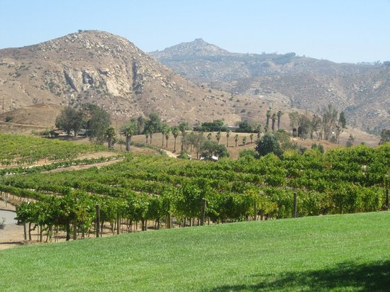 Holiday Inn Express San Diego - Escondido: 6 miles away to Orfila Vineyards and Winery