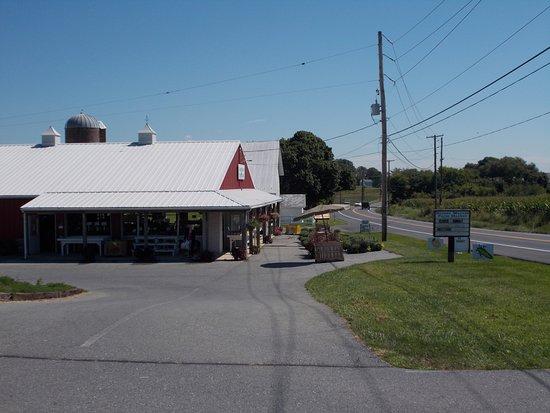 Annville Photo