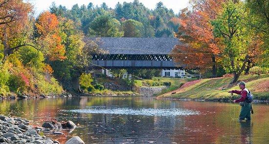 Woodstock Inn and Resort: Fishing