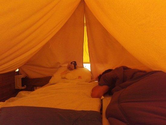 Camping La Confluence : All'interno della tenda: due materassini, lampada e presa per la corrente elettrica.