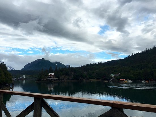 Halibut Cove, AK: Gorgeous view from our table