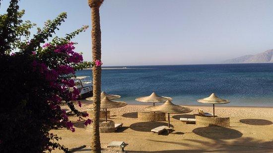 Ibis Styles Dahab Lagoon: Such an amazing beach