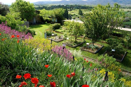 Jardin des Plantes Tinctoriales