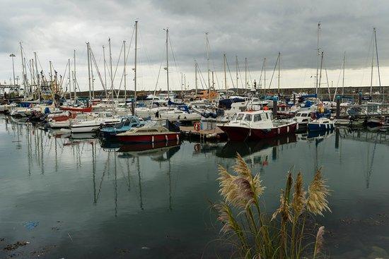 Kilmore Quay Harbour: Harbour