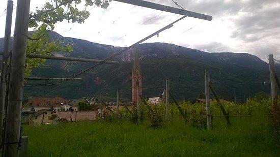 Терлано, Италия: VISTA SU TERLANO DALLA CANTINA